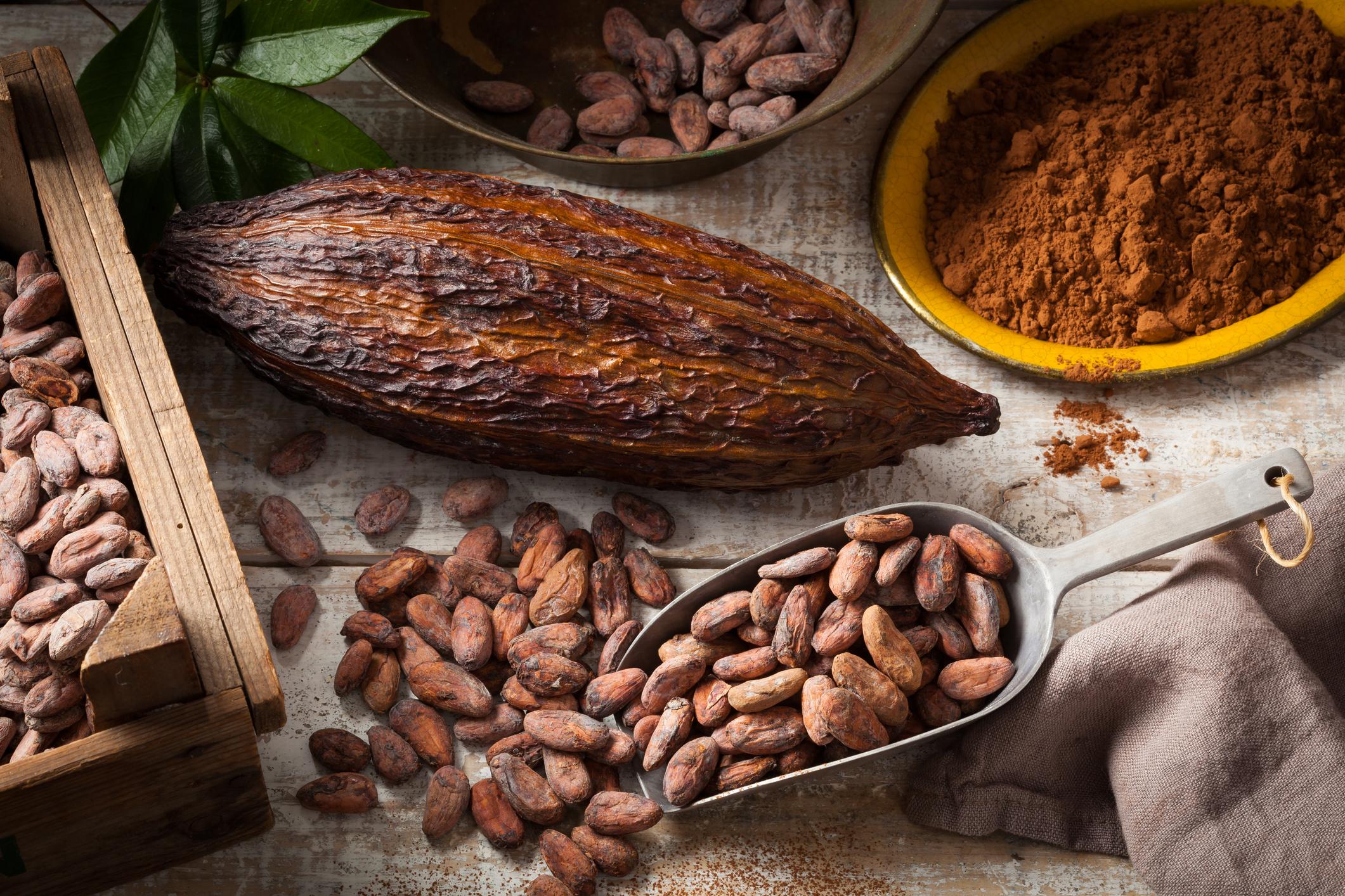 Originário da Amazônia, o cacau é considerado um alimento funcional, ou seja, que têm função nutricional e se consumidos de forma regular e moderada, auxilia na manutenção da saúde.